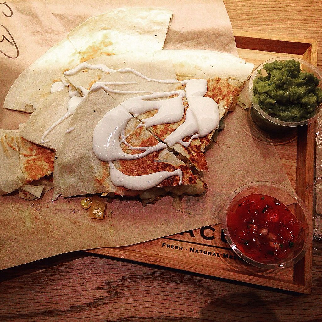 """Photo of Tacuba  by <a href=""""/members/profile/Stechan22"""">Stechan22</a> <br/>Vegetarian Quesadilla <br/> February 12, 2018  - <a href='/contact/abuse/image/107574/358450'>Report</a>"""