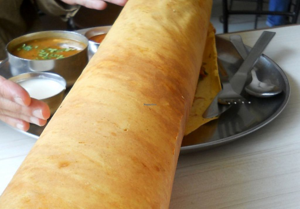 "Photo of Rameshwaram - New Rd  by <a href=""/members/profile/Masala-Dosa"">Masala-Dosa</a> <br/>Paper Dosa... it's huge! <br/> June 6, 2017  - <a href='/contact/abuse/image/10764/274710'>Report</a>"