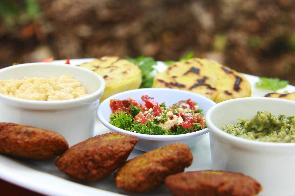 "Photo of Germinar   by <a href=""/members/profile/VeroFlores"">VeroFlores</a> <br/>Mediterranean Platter, with homemade pita bread and falafel <br/> March 15, 2018  - <a href='/contact/abuse/image/107665/371117'>Report</a>"