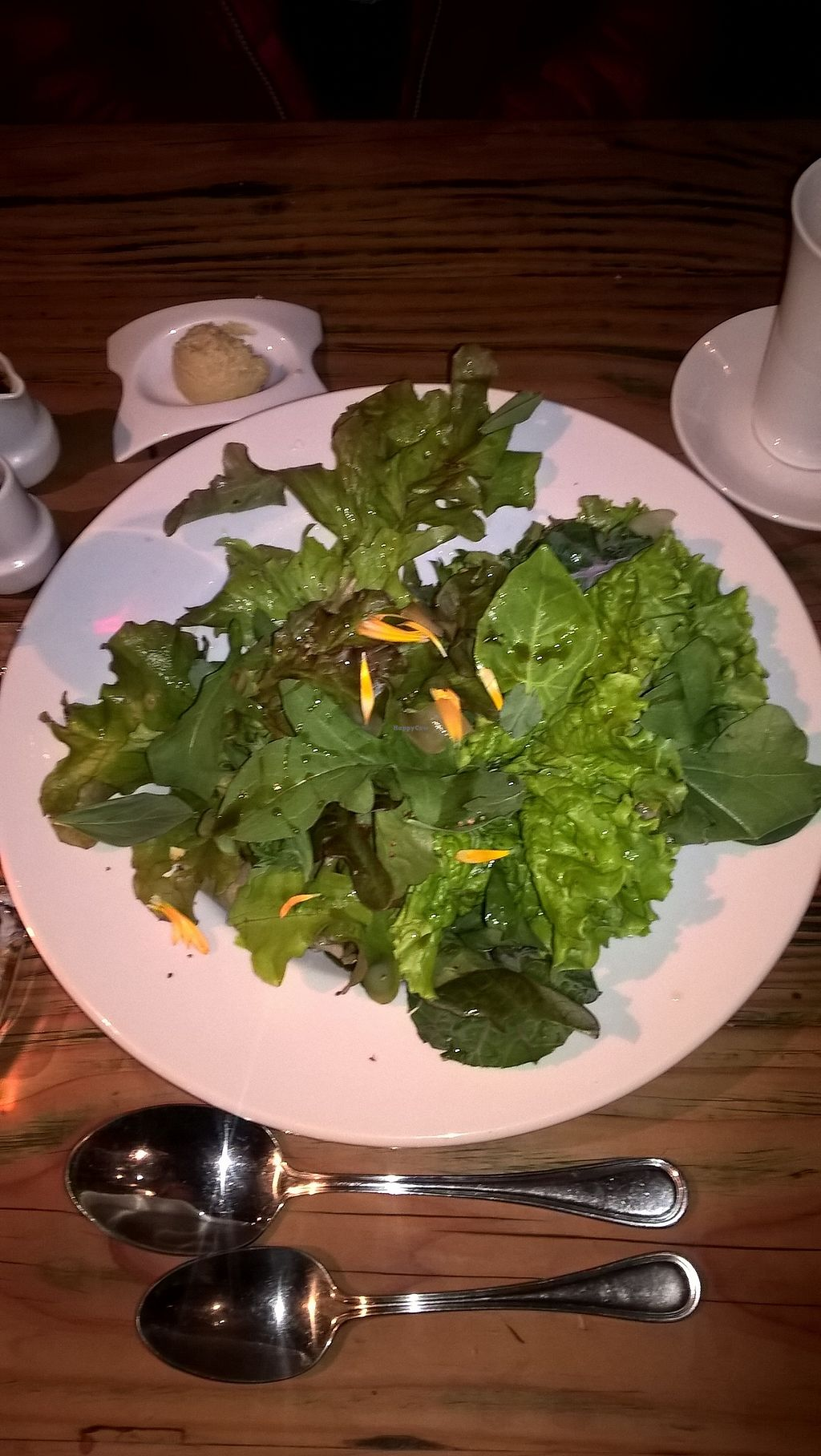 "Photo of Martin Pescador  by <a href=""/members/profile/arya00"">arya00</a> <br/>Salad with lots of different types of leaves <br/> December 23, 2017  - <a href='/contact/abuse/image/107840/338522'>Report</a>"