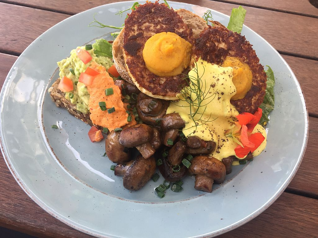 "Photo of The Conscious Kitchen at Solscape  by <a href=""/members/profile/Tiggy"">Tiggy</a> <br/>Fried eggs with mushrooms and hollandaise sauce $20 - Delicious and interesting  <br/> January 1, 2018  - <a href='/contact/abuse/image/107861/341539'>Report</a>"