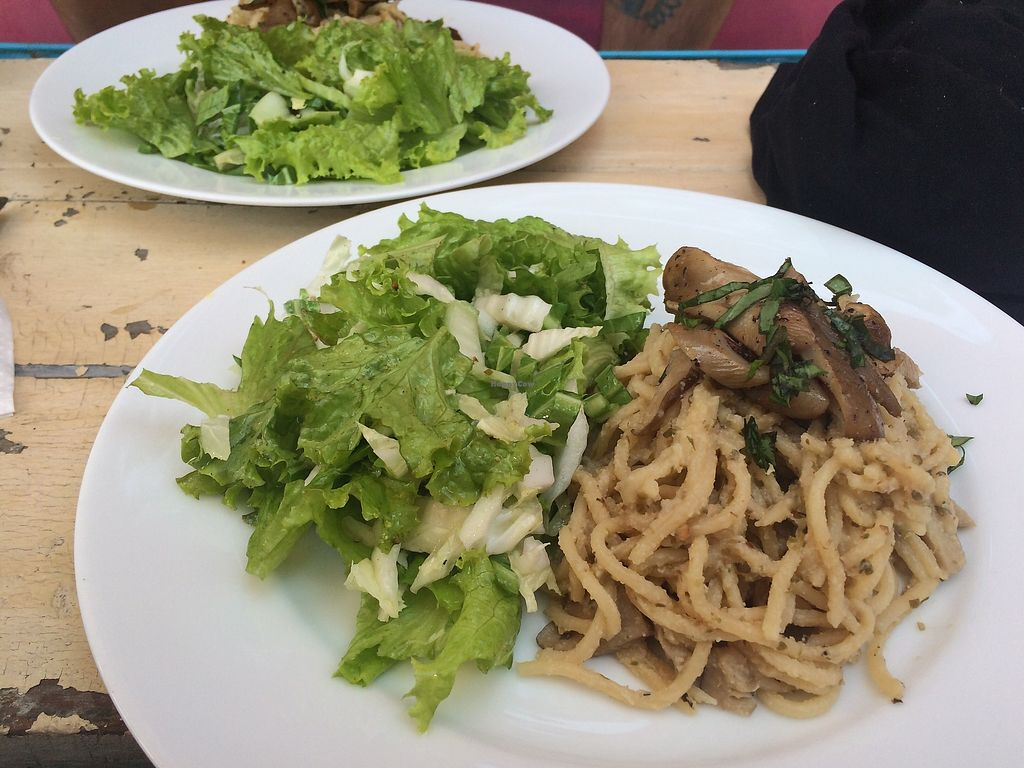 "Photo of Ahimsa Vegan Cafe  by <a href=""/members/profile/fessther"">fessther</a> <br/>Mushrooms carbonara and salad - menu of the day <br/> December 25, 2017  - <a href='/contact/abuse/image/107867/338942'>Report</a>"