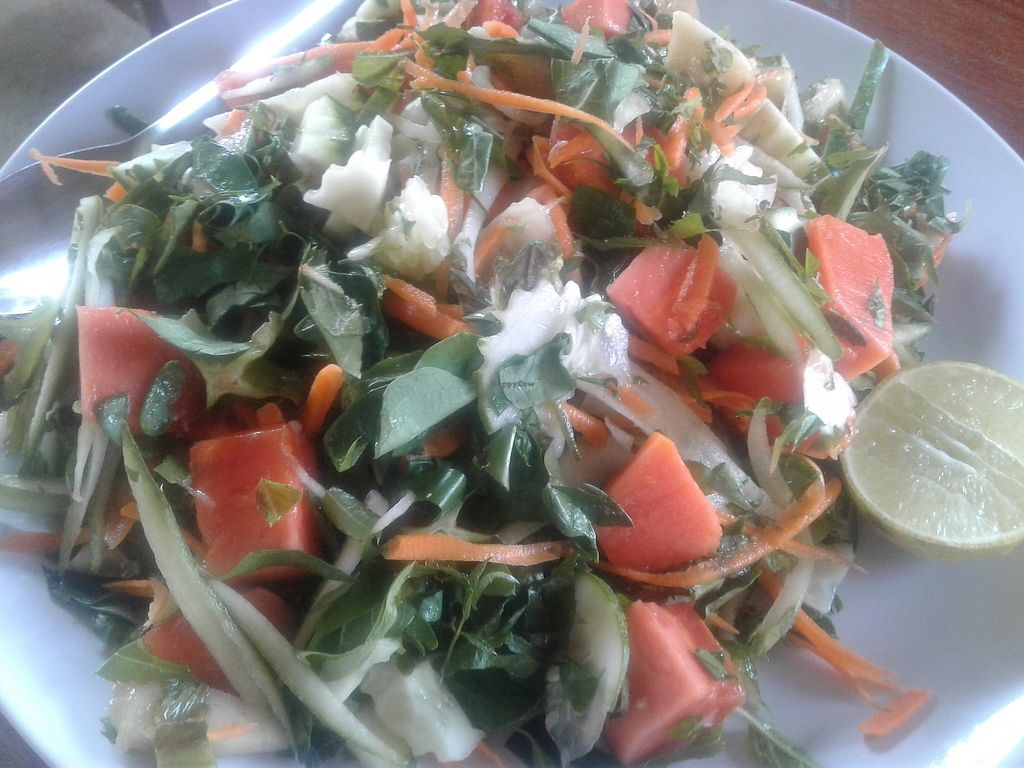 "Photo of Organic Vegetarian Food by Mrs. Pong  by <a href=""/members/profile/AnnaWacker"">AnnaWacker</a> <br/>Green organic papaya salad  <br/> February 16, 2018  - <a href='/contact/abuse/image/107915/360034'>Report</a>"