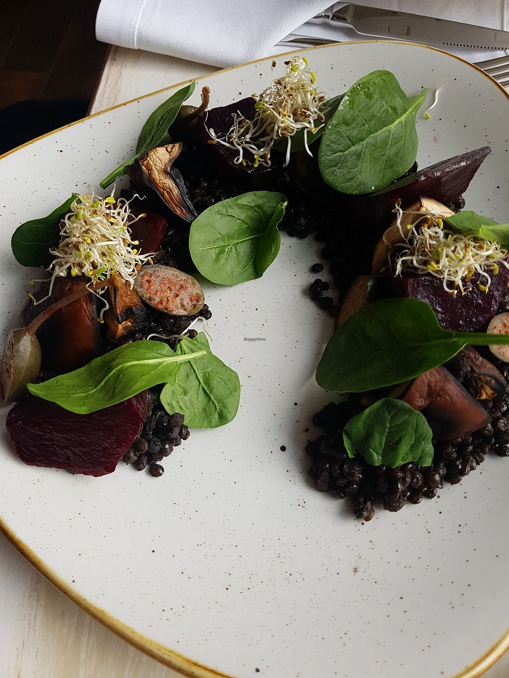"""Photo of Glow  by <a href=""""/members/profile/estefinparis"""">estefinparis</a> <br/>Portobello mushroom with black lentil ragout and roasted beetroot <br/> March 30, 2018  - <a href='/contact/abuse/image/107923/378312'>Report</a>"""
