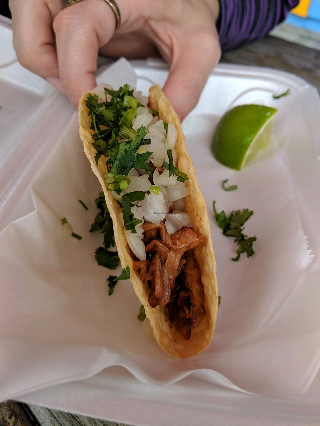 """Photo of Nacho Taco  by <a href=""""/members/profile/BryanRoseberry"""">BryanRoseberry</a> <br/>BBQ Jackfruit taco <br/> February 28, 2018  - <a href='/contact/abuse/image/108088/364756'>Report</a>"""