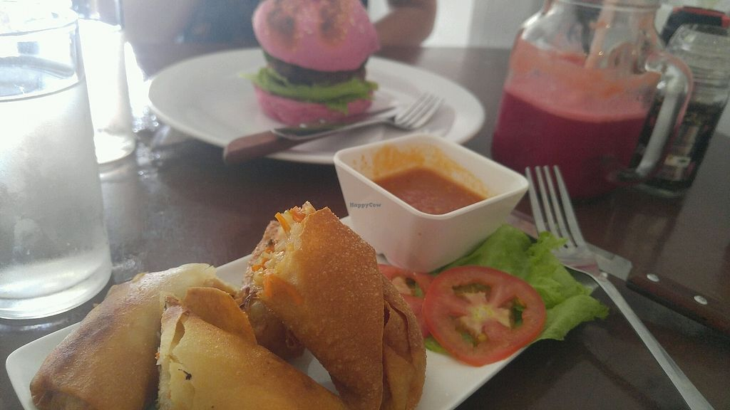 "Photo of Funky Vege Cafe  by <a href=""/members/profile/AlexHammond"">AlexHammond</a> <br/>Spring Rolls and a funky burger! delicious:)  <br/> February 13, 2018  - <a href='/contact/abuse/image/108179/358719'>Report</a>"