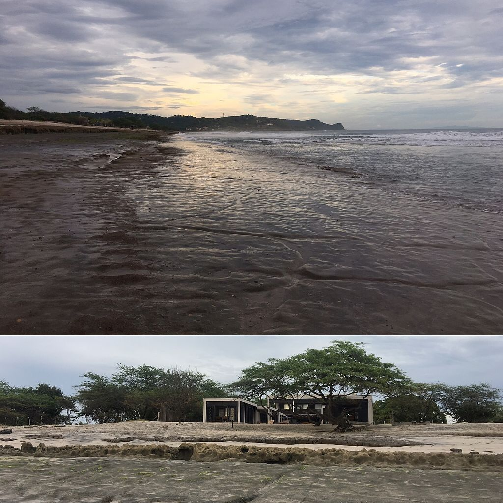"Photo of Taberna 99 at 99 Surf Lodge  by <a href=""/members/profile/SimonZanini"">SimonZanini</a> <br/>Low tide @ 99 <br/> December 30, 2017  - <a href='/contact/abuse/image/108218/340726'>Report</a>"
