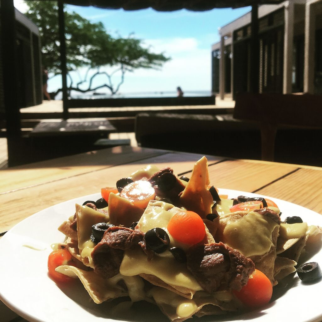 "Photo of Taberna 99 at 99 Surf Lodge  by <a href=""/members/profile/SimonZanini"">SimonZanini</a> <br/>100% vegan home made nachos! <br/> January 3, 2018  - <a href='/contact/abuse/image/108218/342668'>Report</a>"