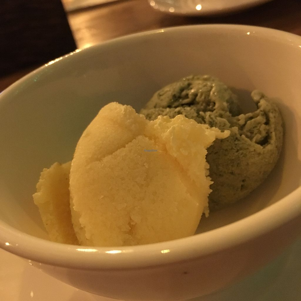 """Photo of Green-Go Garden  by <a href=""""/members/profile/SuBravo"""">SuBravo</a> <br/>Passion fruit and mint lemon vegan ice cream  <br/> February 19, 2018  - <a href='/contact/abuse/image/108307/361354'>Report</a>"""