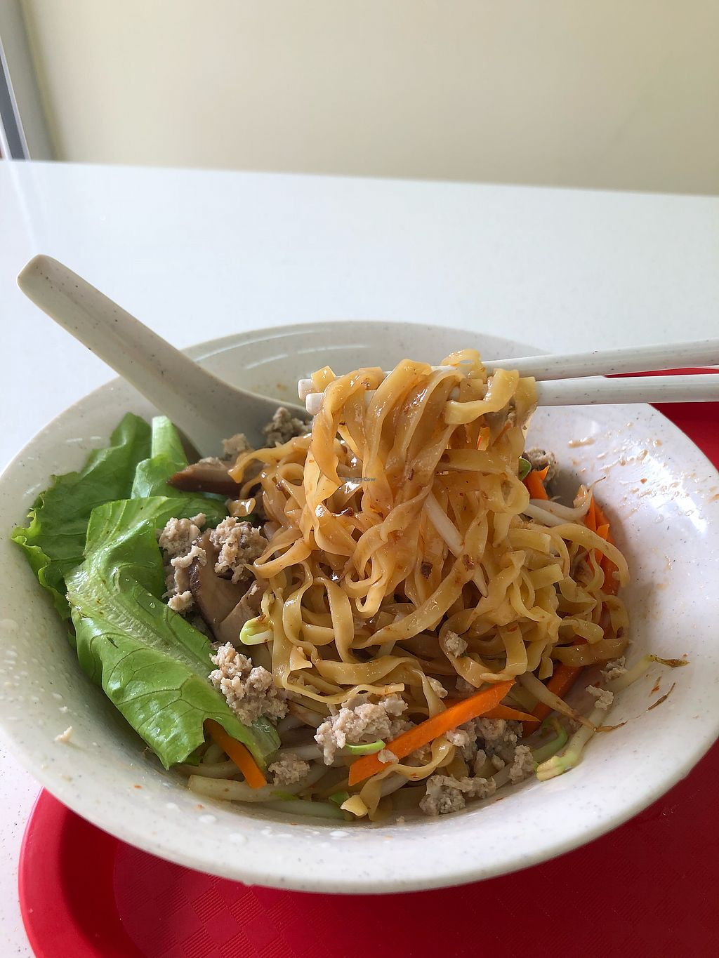 """Photo of Pine Green Vegan Cafe  by <a href=""""/members/profile/CherylQuincy"""">CherylQuincy</a> <br/>Bak Chor Mee <br/> January 18, 2018  - <a href='/contact/abuse/image/108370/347911'>Report</a>"""