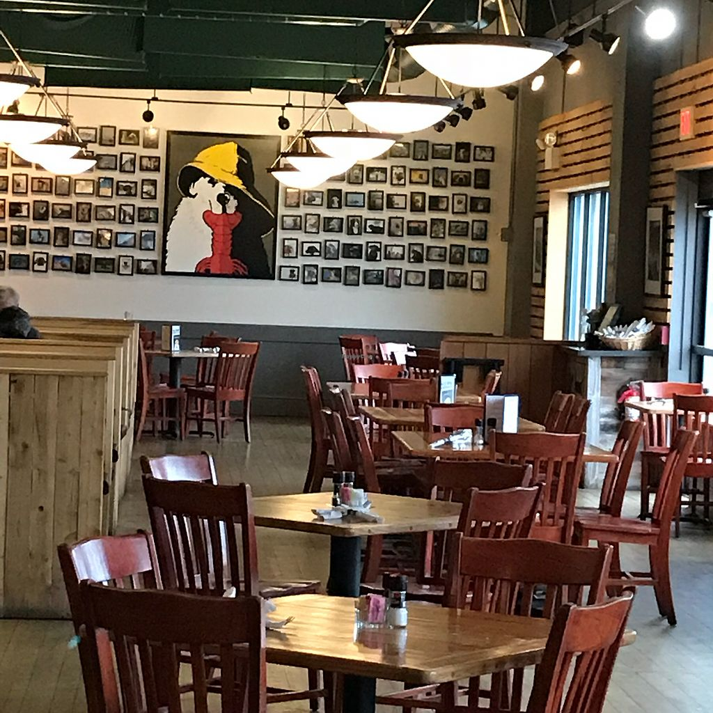 """Photo of Sea Dog Brewing Co  by <a href=""""/members/profile/Sarah%20P"""">Sarah P</a> <br/>Seating <br/> April 17, 2018  - <a href='/contact/abuse/image/108407/386948'>Report</a>"""