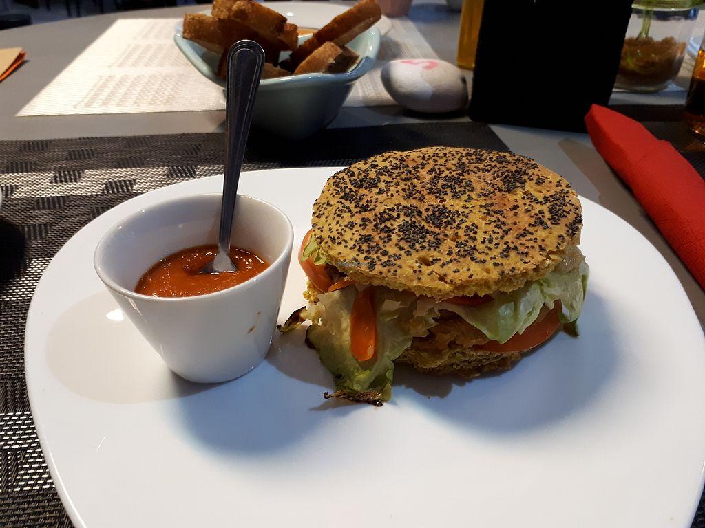 "Photo of Casa Veggy  by <a href=""/members/profile/FulviaGherardelli"">FulviaGherardelli</a> <br/>Vegan burger and arrabbiata sauce! <br/> April 3, 2018  - <a href='/contact/abuse/image/108451/380133'>Report</a>"
