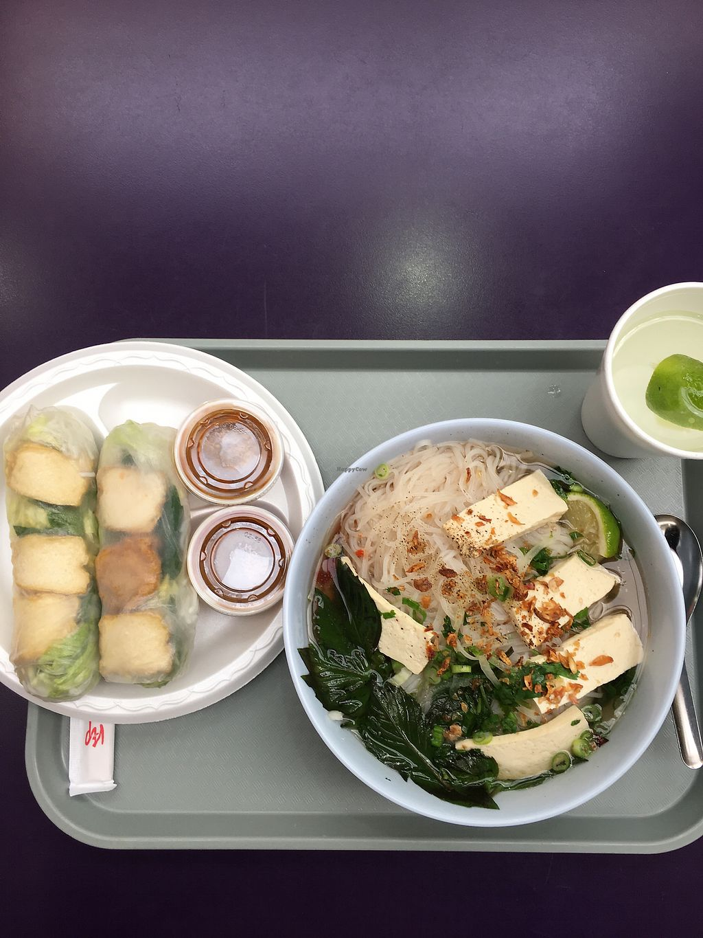 """Photo of Vietnam Cafe  by <a href=""""/members/profile/ccampbel"""">ccampbel</a> <br/>Vegan pho and tofu spring rolls <br/> January 7, 2018  - <a href='/contact/abuse/image/108520/344043'>Report</a>"""