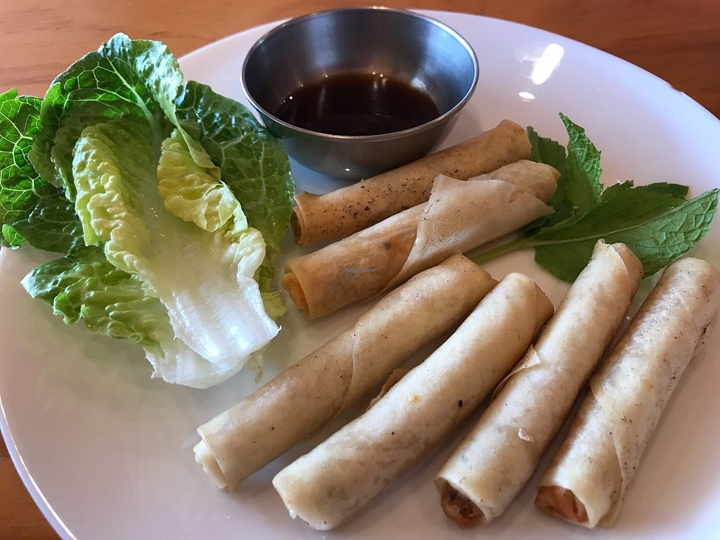 """Photo of Rock Daisy Cafe  by <a href=""""/members/profile/AyeshaKieraan"""">AyeshaKieraan</a> <br/>Spring rolls with Vietnamese mint and lettuce  <br/> January 3, 2018  - <a href='/contact/abuse/image/108524/342400'>Report</a>"""