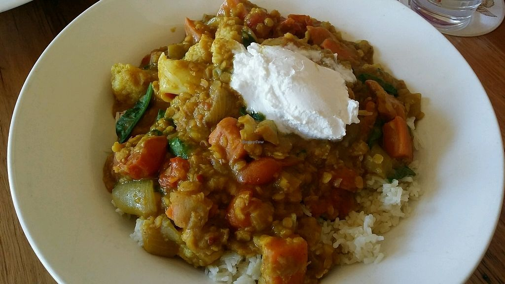 """Photo of Alpine Hotel  by <a href=""""/members/profile/JenMeisterActs"""">JenMeisterActs</a> <br/>Vegan red lentil and vegetable curry with pilau from the specials menu <br/> April 8, 2018  - <a href='/contact/abuse/image/108634/382330'>Report</a>"""