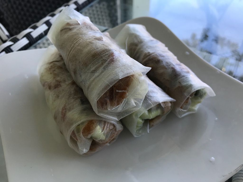 """Photo of Phap Duyen Mon An Chay  by <a href=""""/members/profile/kezia"""">kezia</a> <br/>Fresh vegan spring rolls  <br/> January 7, 2018  - <a href='/contact/abuse/image/108756/343921'>Report</a>"""