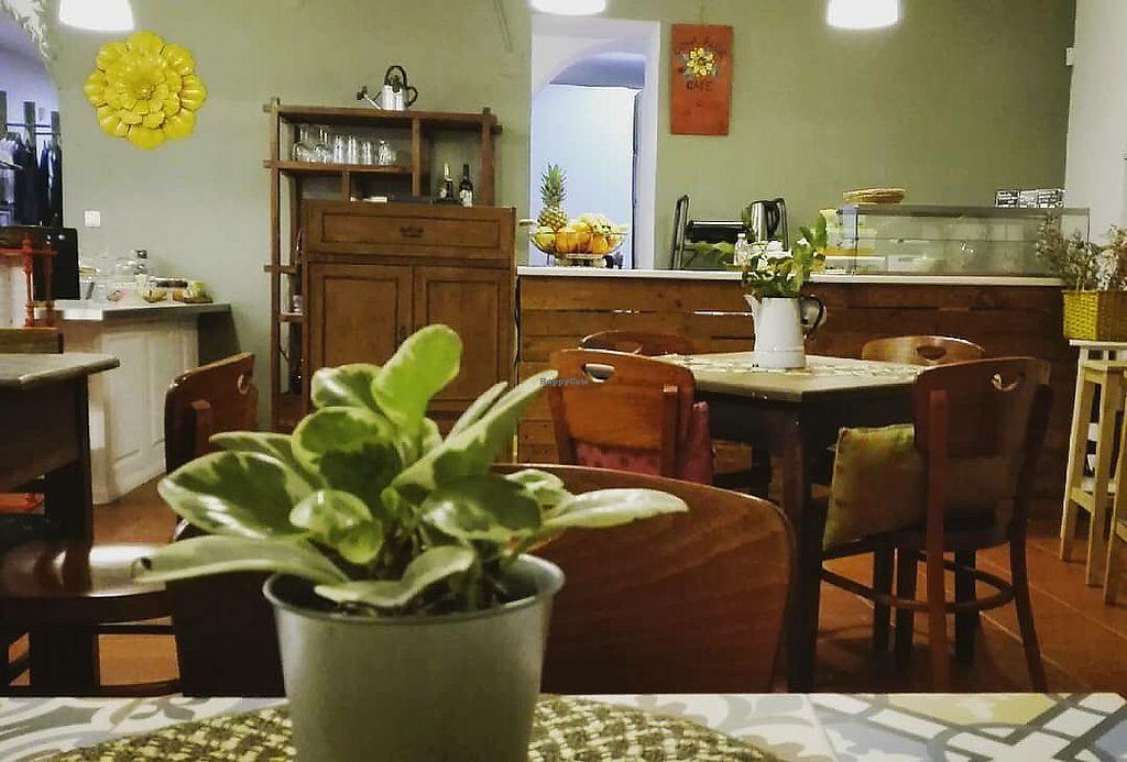 "Photo of Dona Flor Café - Chiado  by <a href=""/members/profile/Vera%20Peres"">Vera Peres</a> <br/>Venue  <br/> January 9, 2018  - <a href='/contact/abuse/image/109088/344790'>Report</a>"