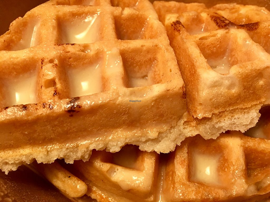 """Photo of Wildflower Vegan Co. Featuring Burnamup  by <a href=""""/members/profile/myra975"""">myra975</a> <br/>Plain Waffles  <br/> January 16, 2018  - <a href='/contact/abuse/image/109093/347322'>Report</a>"""