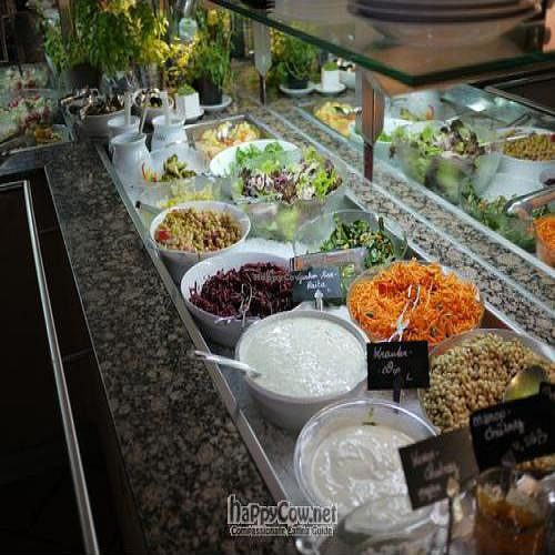"""Photo of Ginko  by <a href=""""/members/profile/Powerbex"""">Powerbex</a> <br/>Salad Bar  <br/> July 31, 2010  - <a href='/contact/abuse/image/10916/5355'>Report</a>"""