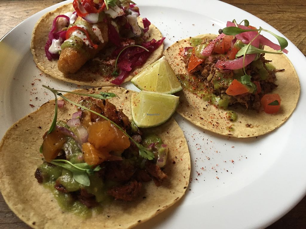 """Photo of The Spread Eagle  by <a href=""""/members/profile/beckylyk"""">beckylyk</a> <br/>Tofish, vegan pork and jackfruit tacos <br/> April 14, 2018  - <a href='/contact/abuse/image/109265/385659'>Report</a>"""