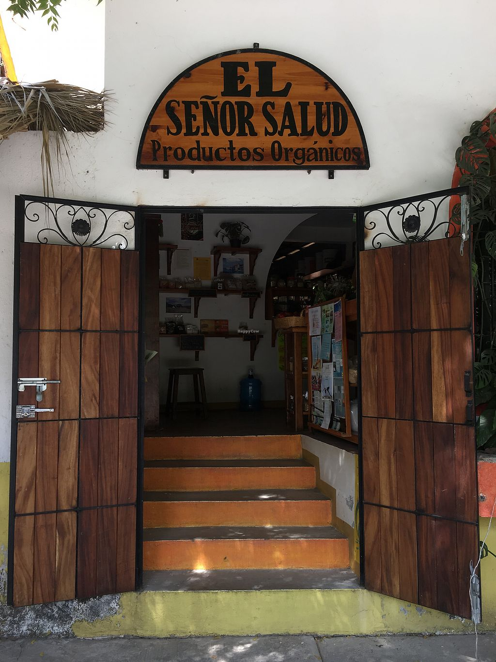 """Photo of REMOVED: Senor Salud  by <a href=""""/members/profile/Moon%C3%ADqua"""">Mooníqua</a> <br/>Street view <br/> March 18, 2018  - <a href='/contact/abuse/image/109284/372519'>Report</a>"""