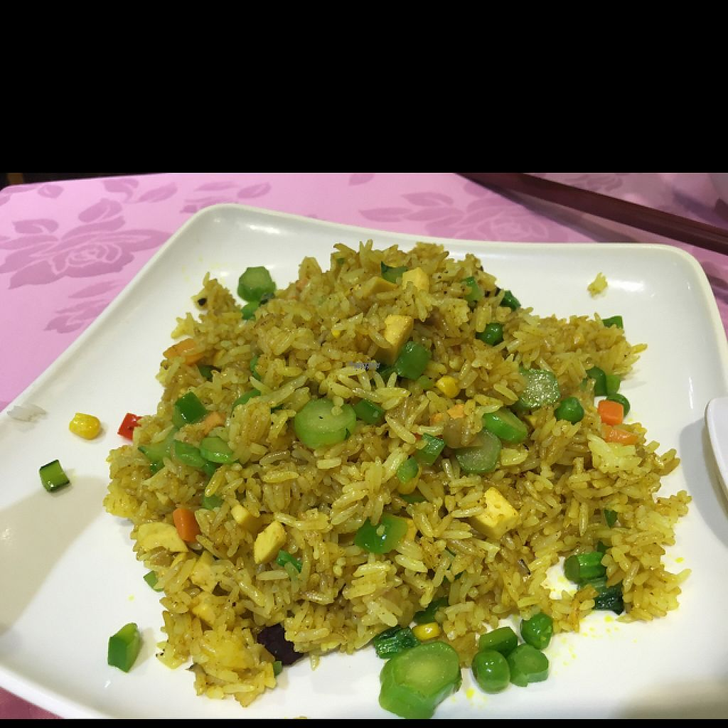 """Photo of Treasure Vegetarian Restaurant  by <a href=""""/members/profile/Veg4Jay"""">Veg4Jay</a> <br/>Curry Fried Rice <br/> March 30, 2017  - <a href='/contact/abuse/image/10941/242653'>Report</a>"""