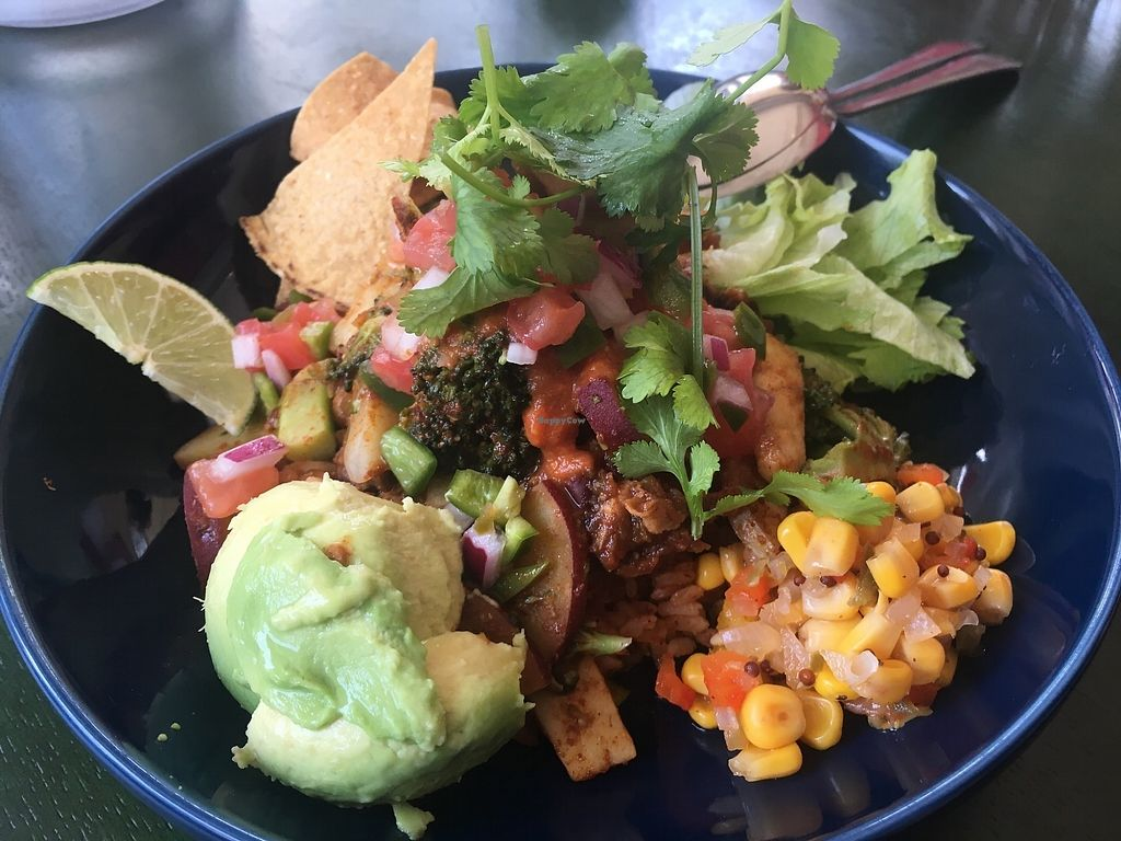 """Photo of Ceviche  by <a href=""""/members/profile/jaws"""">jaws</a> <br/>Vegan jambalaya (ingredients vary with each visit) <br/> April 19, 2018  - <a href='/contact/abuse/image/109718/387896'>Report</a>"""