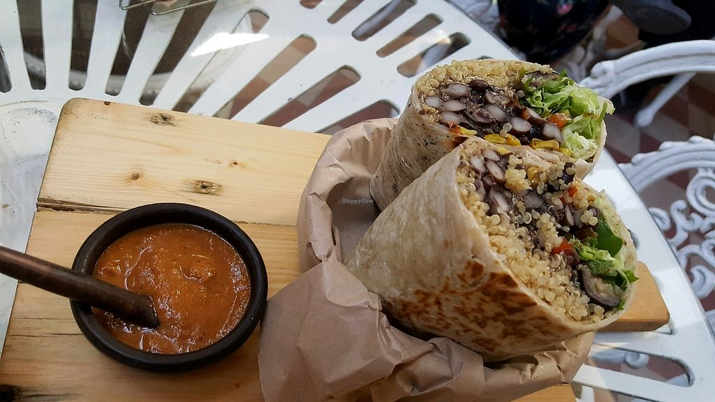 """Photo of Sapiens  by <a href=""""/members/profile/planetlemon"""">planetlemon</a> <br/>burrito - will fill you up <br/> March 29, 2018  - <a href='/contact/abuse/image/109799/377981'>Report</a>"""