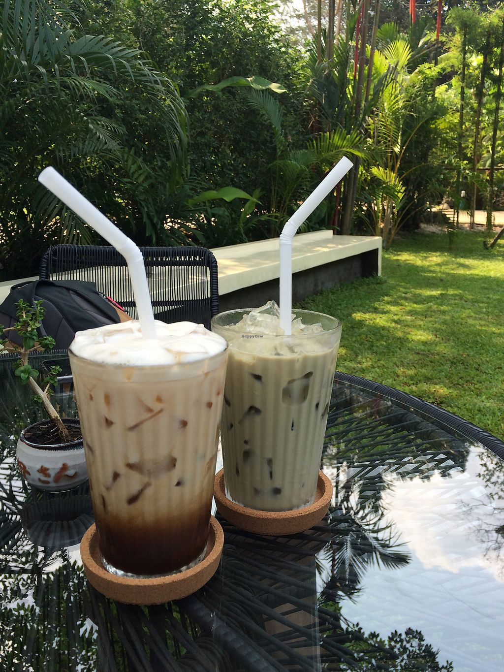 """Photo of Fig Cafe  by <a href=""""/members/profile/VeroniqueVanBuynder"""">VeroniqueVanBuynder</a> <br/>Ice coffe with almond milk <br/> March 17, 2018  - <a href='/contact/abuse/image/109941/371712'>Report</a>"""