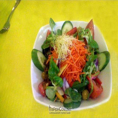 "Photo of Beet Vegetariano  by <a href=""/members/profile/veganperson"">veganperson</a> <br/>A delicious, beautifully presented salad served at Restaurante Vegetariano, Torrevieja, Costa Blanca, Spain <br/> November 4, 2009  - <a href='/contact/abuse/image/1102/2902'>Report</a>"
