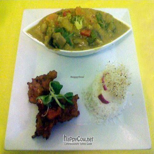 "Photo of Beet Vegetariano  by <a href=""/members/profile/veganperson"">veganperson</a> <br/>Delicious vegan curry and rice served at Restaurante Vegetariano, Torrevieja, Costa Blanca, Spain <br/> November 4, 2009  - <a href='/contact/abuse/image/1102/2903'>Report</a>"
