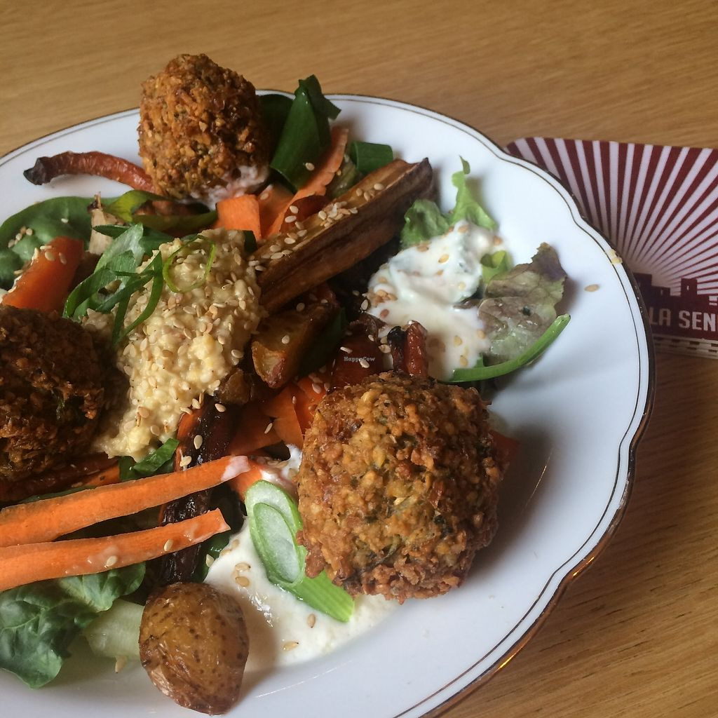 """Photo of Contrebande Bar  by <a href=""""/members/profile/NinaBeau"""">NinaBeau</a> <br/>Vegan Falafels <br/> January 29, 2018  - <a href='/contact/abuse/image/110305/352491'>Report</a>"""