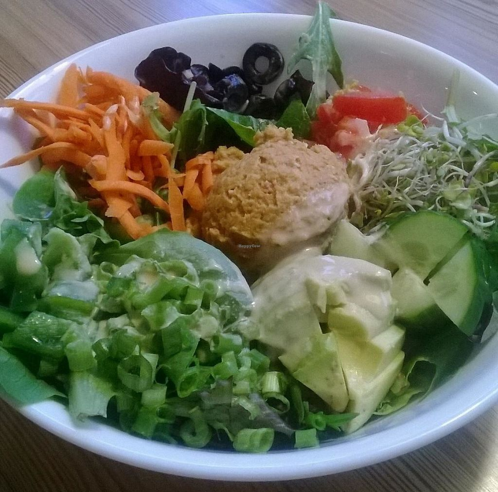 """Photo of Twisted Tree Cafe  by <a href=""""/members/profile/Isamara"""">Isamara</a> <br/>Hummus plate <br/> May 30, 2015  - <a href='/contact/abuse/image/11042/208562'>Report</a>"""