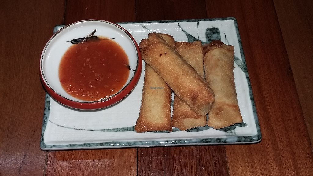 "Photo of Nomad Kitchen & Bar  by <a href=""/members/profile/Nomadkitchen%26bar"">Nomadkitchen&bar</a> <br/>Vegan fried homemade spring rolls <br/> January 29, 2018  - <a href='/contact/abuse/image/110494/352373'>Report</a>"