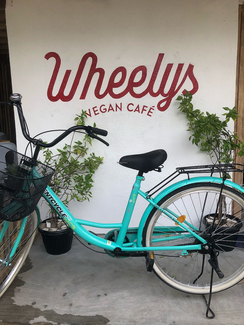 """Photo of Wheelys Cafe  by <a href=""""/members/profile/gzelbautista"""">gzelbautista</a> <br/>Wheelys Cafe <br/> January 28, 2018  - <a href='/contact/abuse/image/110549/351716'>Report</a>"""