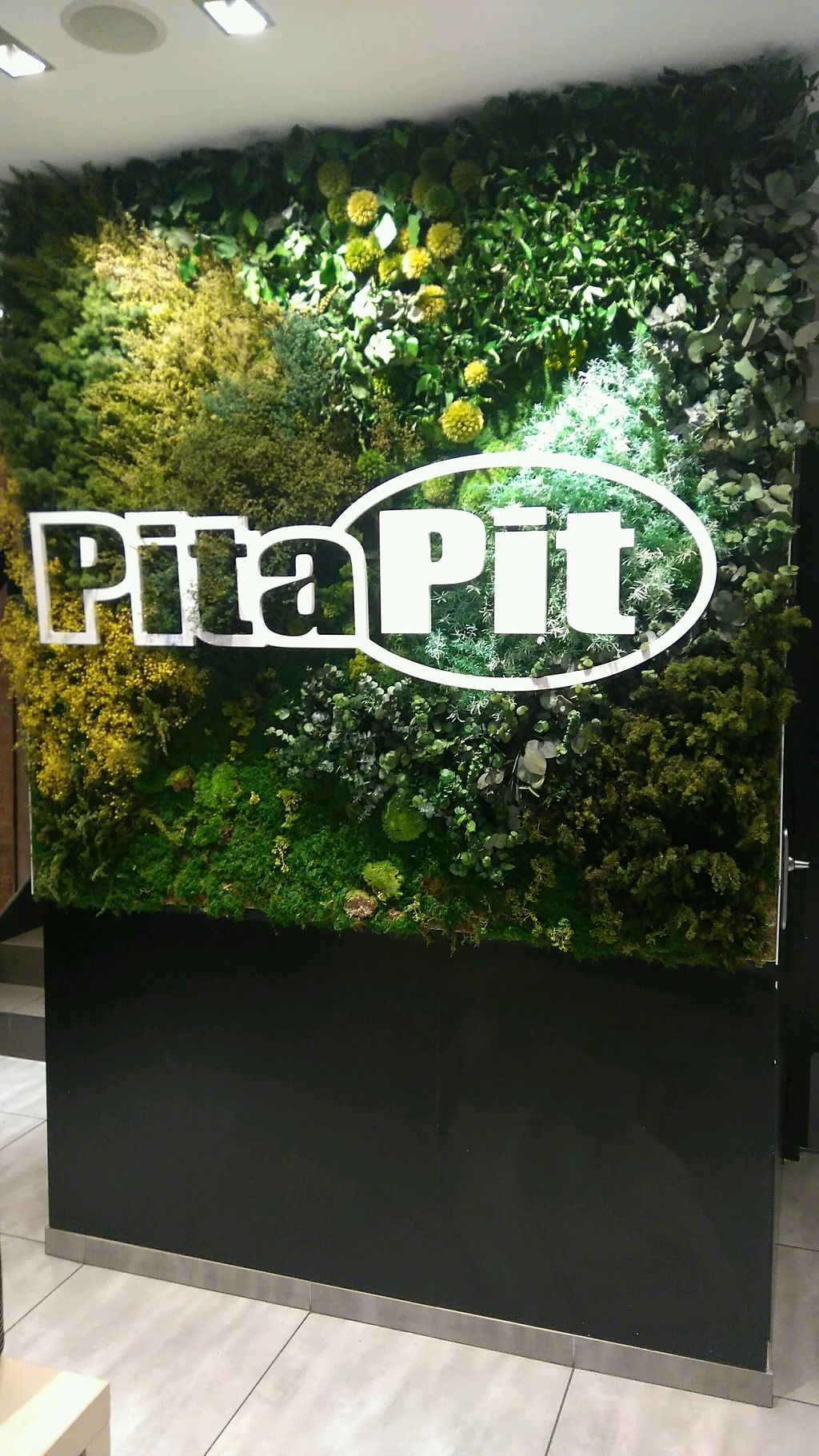 "Photo of Pita Pit  by <a href=""/members/profile/MlleCarine"">MlleCarine</a> <br/>nice interior <br/> February 8, 2018  - <a href='/contact/abuse/image/110599/356466'>Report</a>"