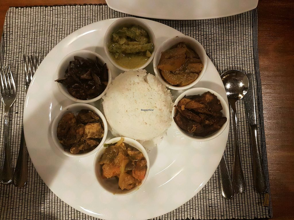 """Photo of Herbs and Spices  by <a href=""""/members/profile/jzoumides"""">jzoumides</a> <br/>Heirloom rice with 6 veggie curries. Soooooo good!!  <br/> April 20, 2018  - <a href='/contact/abuse/image/110613/388359'>Report</a>"""