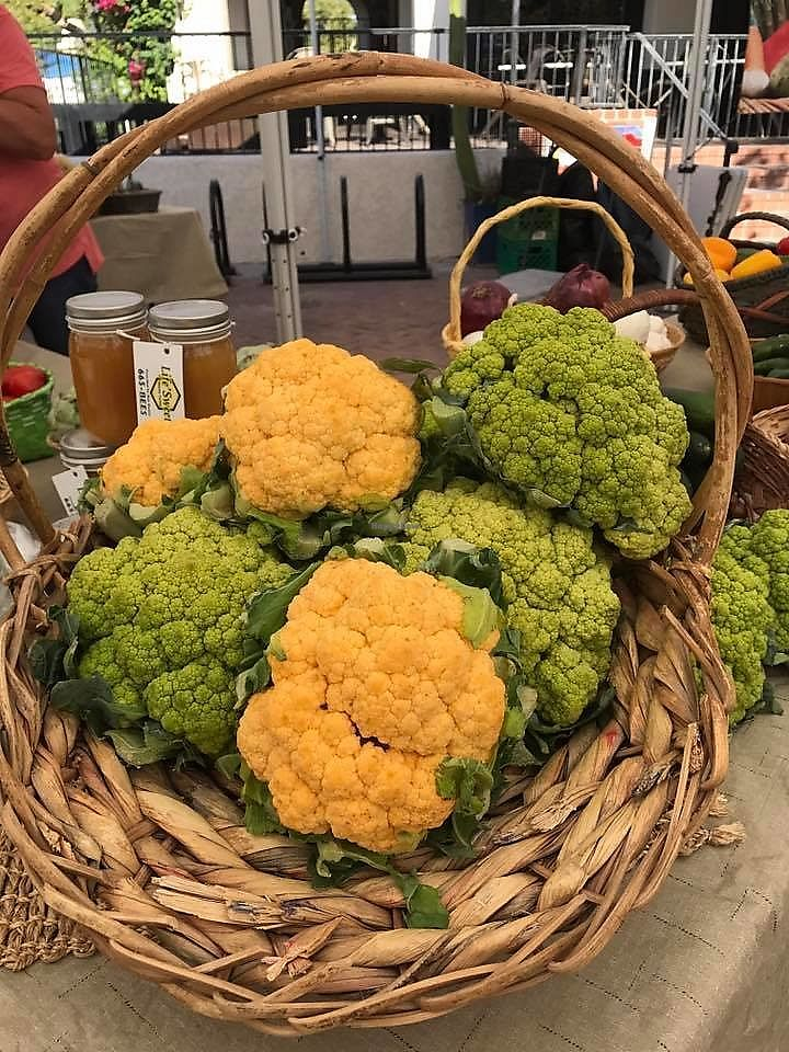 "Photo of St. Philip's Plaza Farmers' Market  by <a href=""/members/profile/FoodInRoot"">FoodInRoot</a> <br/>Great Produce <br/> January 30, 2018  - <a href='/contact/abuse/image/110804/352856'>Report</a>"