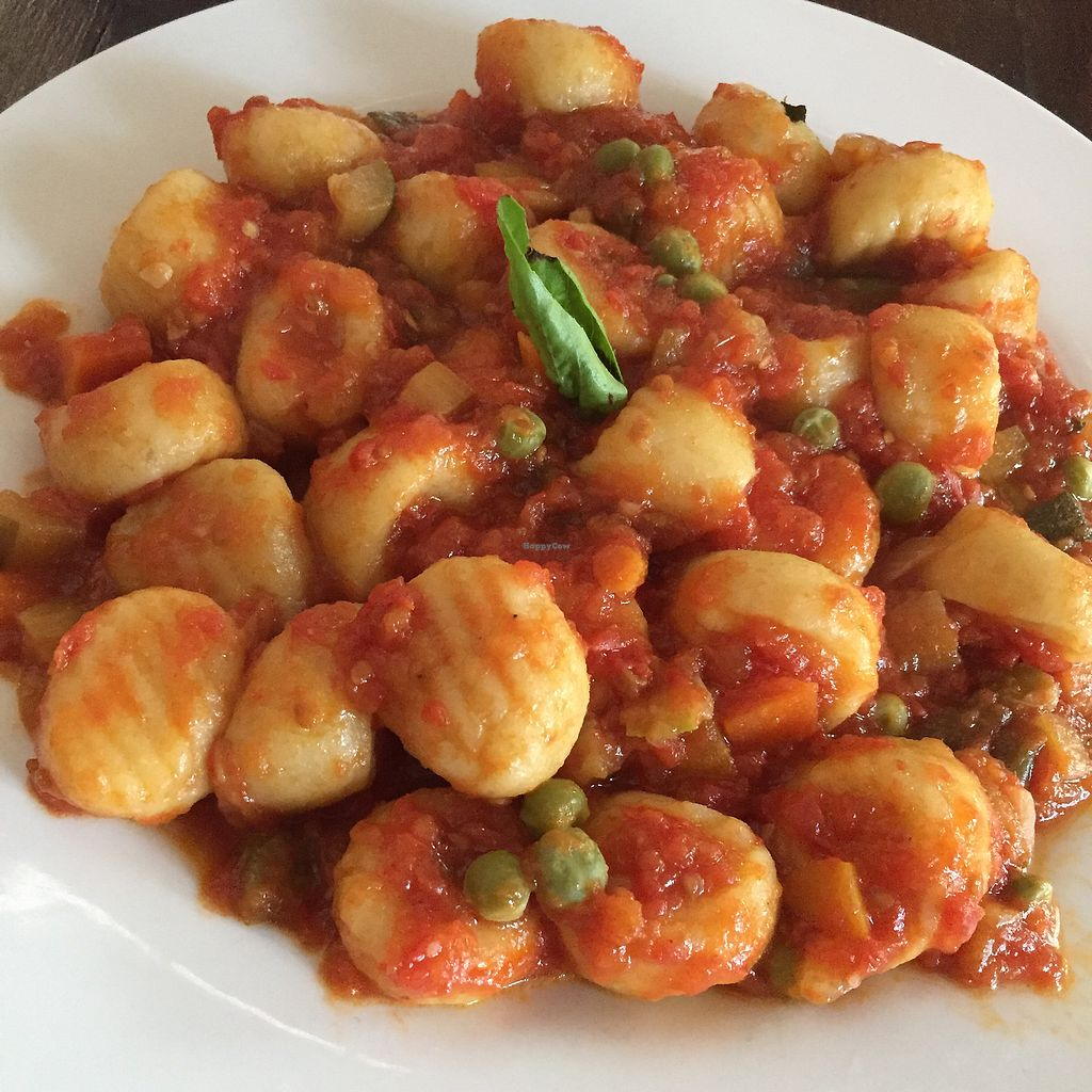 "Photo of Casa Rossa  by <a href=""/members/profile/ryanwhatt"">ryanwhatt</a> <br/>Gnocchi Alla Vegetariana <br/> January 31, 2018  - <a href='/contact/abuse/image/110805/353136'>Report</a>"