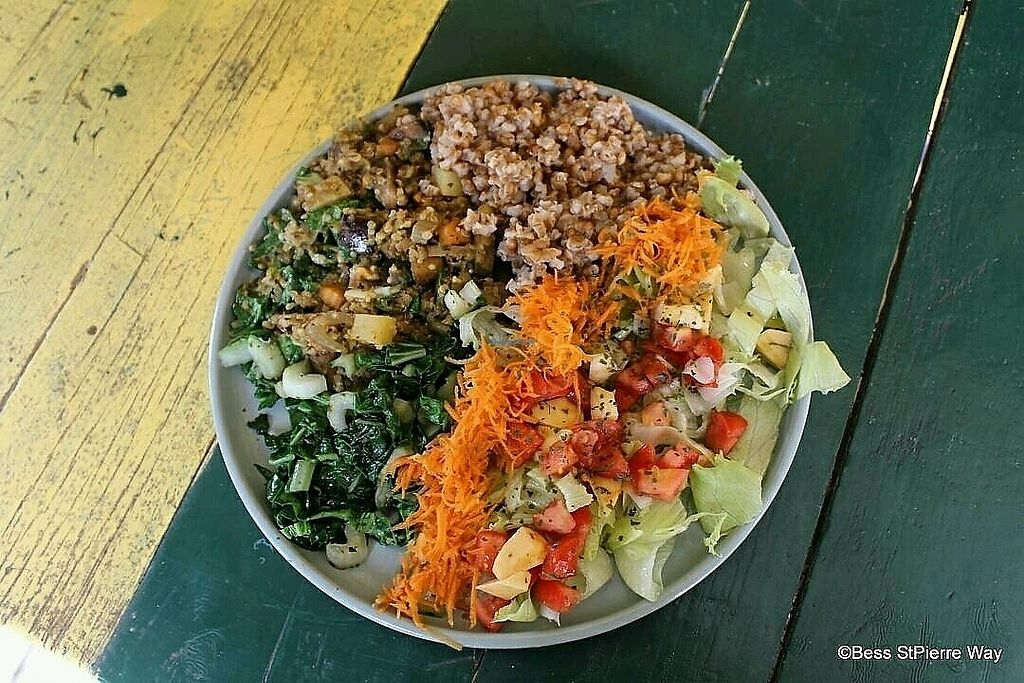 """Photo of Ital Vital  by <a href=""""/members/profile/Italvitalrestaurant"""">Italvitalrestaurant</a> <br/>Ital Vital vegetarian restaurant  <br/> February 21, 2018  - <a href='/contact/abuse/image/110976/362172'>Report</a>"""