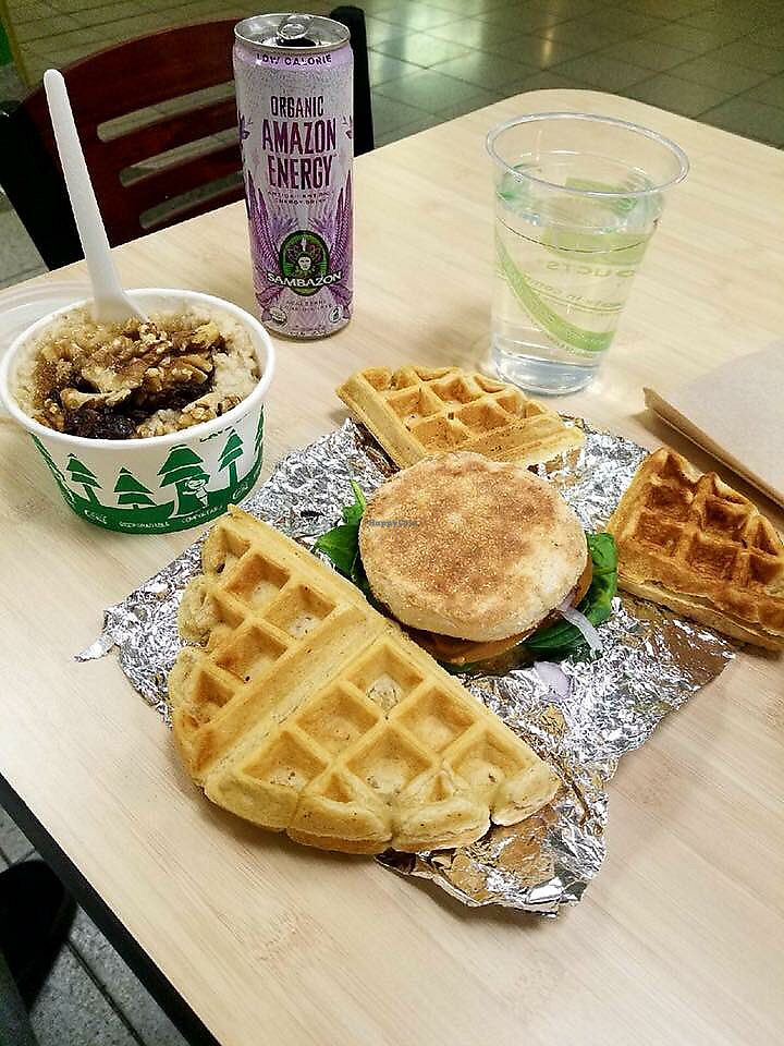 """Photo of Evan's Organic Eatery  by <a href=""""/members/profile/NotoriousEEP"""">NotoriousEEP</a> <br/>Breakfast. All vegan! <br/> March 13, 2018  - <a href='/contact/abuse/image/111060/370259'>Report</a>"""