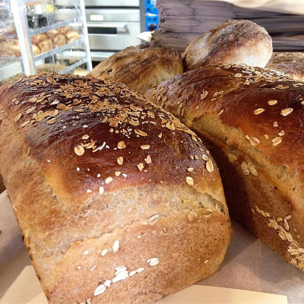 """Photo of Knead Bakery  by <a href=""""/members/profile/KneadVT"""">KneadVT</a> <br/>maple wheat <br/> March 20, 2018  - <a href='/contact/abuse/image/111070/373374'>Report</a>"""