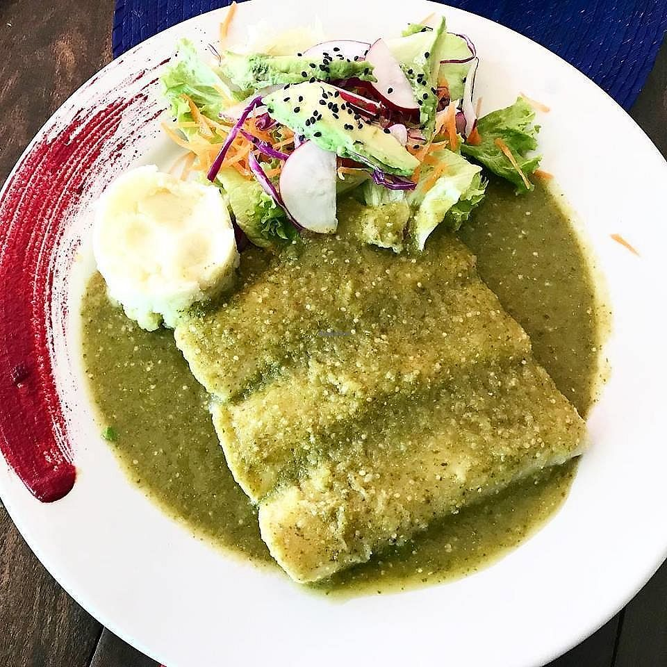 "Photo of El Zarape Malecón   by <a href=""/members/profile/YanethGris"">YanethGris</a> <br/>Vegan mushroom enchiladas with green sauce, mashed potato and salad.  <br/> February 4, 2018  - <a href='/contact/abuse/image/111108/355041'>Report</a>"