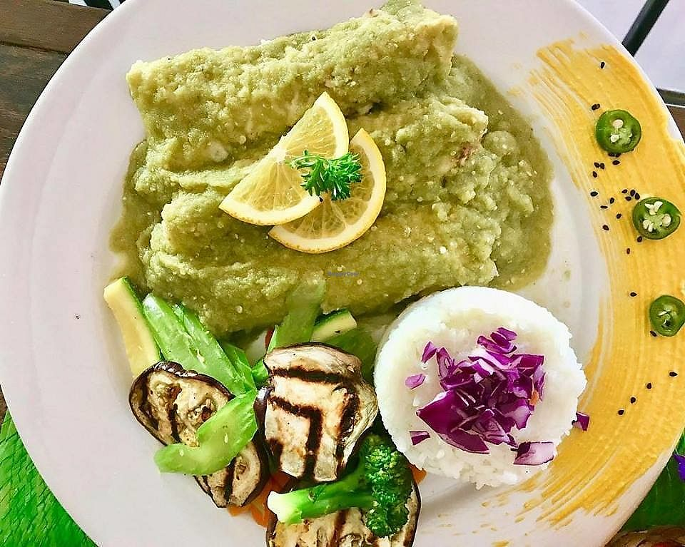 "Photo of El Zarape Malecón   by <a href=""/members/profile/YanethGris"">YanethGris</a> <br/>Vegan enchiladas  <br/> March 10, 2018  - <a href='/contact/abuse/image/111108/368751'>Report</a>"