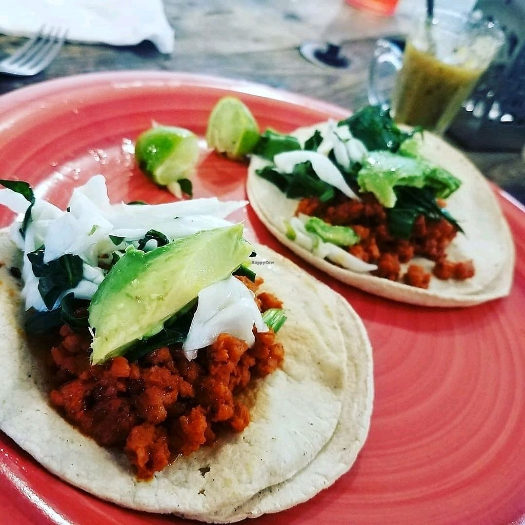 """Photo of Nectar - Peace & Love Food  by <a href=""""/members/profile/KaitLaPierre"""">KaitLaPierre</a> <br/>Tacos! <br/> March 11, 2018  - <a href='/contact/abuse/image/111445/369109'>Report</a>"""