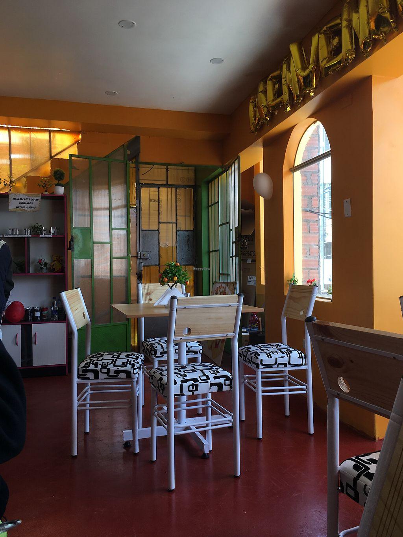 "Photo of La Veganessa  by <a href=""/members/profile/buckethatV"">buckethatV</a> <br/>El restaurante <br/> February 18, 2018  - <a href='/contact/abuse/image/111484/361001'>Report</a>"