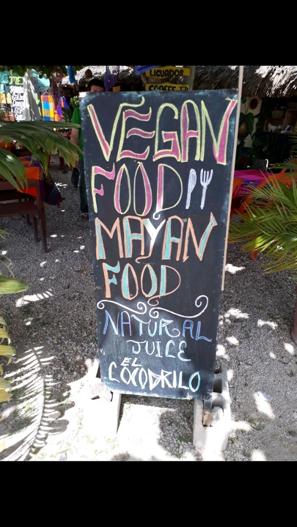 "Photo of El Cocodrilo  by <a href=""/members/profile/Flouw"">Flouw</a> <br/>vegan mayan food <br/> March 5, 2018  - <a href='/contact/abuse/image/111619/367105'>Report</a>"
