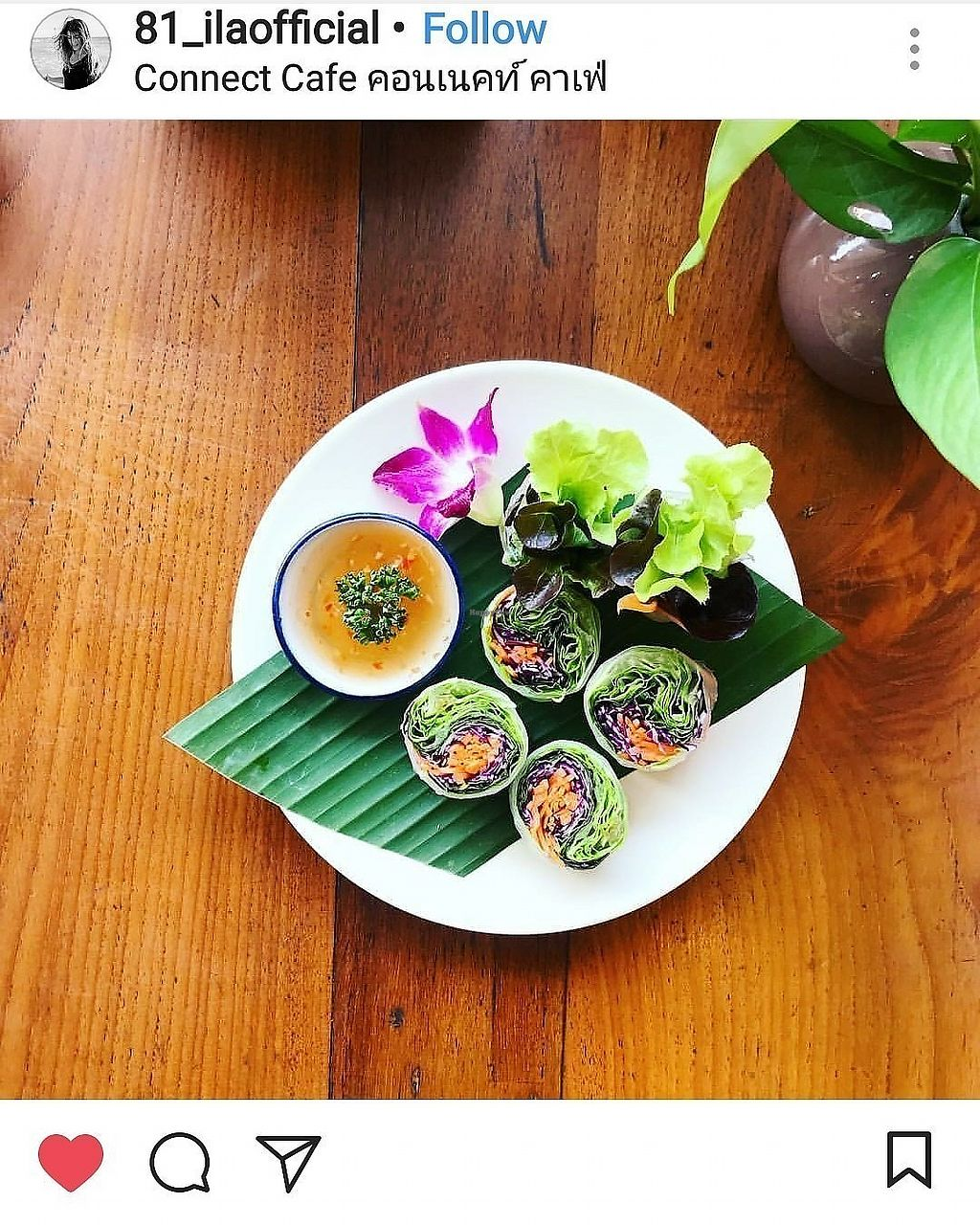 """Photo of Connect Cafe  by <a href=""""/members/profile/connectcafe"""">connectcafe</a> <br/>Fresh spring rolls <br/> February 20, 2018  - <a href='/contact/abuse/image/111723/361549'>Report</a>"""