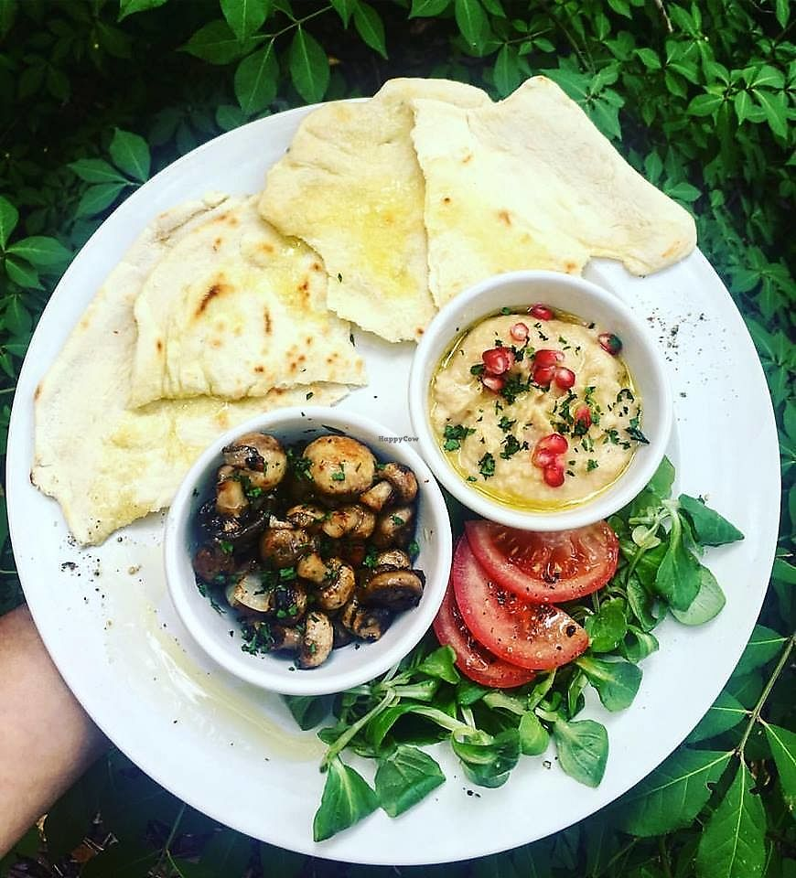 """Photo of Spižírna 1902  by <a href=""""/members/profile/community5"""">community5</a> <br/>Tortilla, mushrooms, humus and salad <br/> February 19, 2018  - <a href='/contact/abuse/image/111726/361484'>Report</a>"""