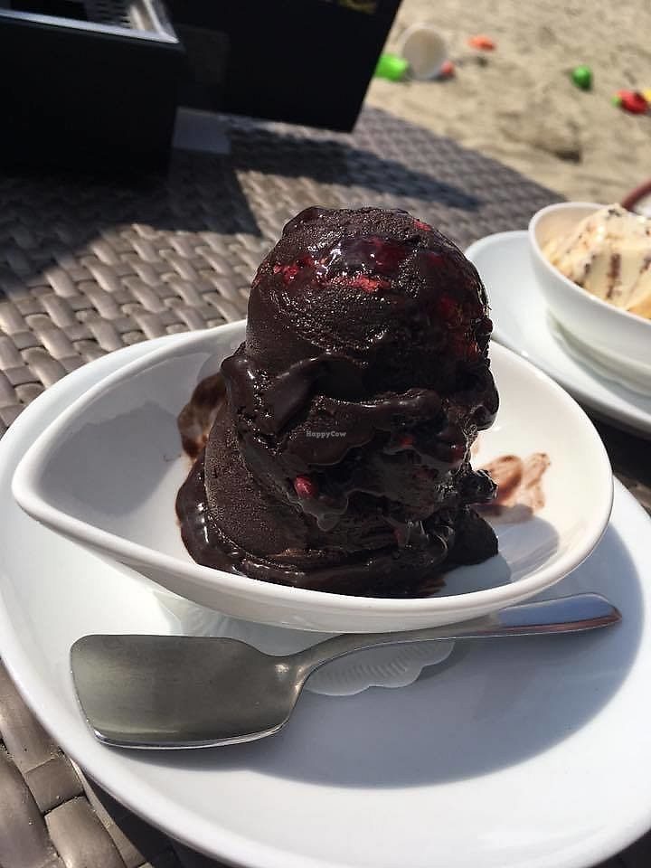 """Photo of Kavarna Cacao  by <a href=""""/members/profile/slovenianvegan"""">slovenianvegan</a> <br/>Dark chocolate with raspberry vegan ice cream.  Photo by: Abbie D. on Facebook <br/> February 12, 2018  - <a href='/contact/abuse/image/111868/358510'>Report</a>"""